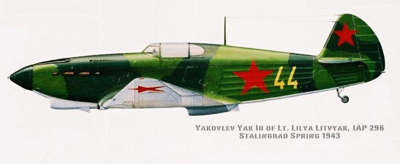 yak_1b